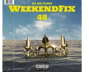 Dj Ice Flake – WeekendFix 48 2020