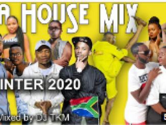 "DJ TKM ft. Master KG, TNS, Makhadzi, Da Capo, – South African House Music Mix 2020 ""Winter"""