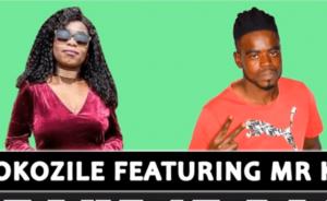 Thokozile – Take It Back feat Mr K2