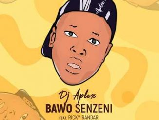 DJ Aplex SA – Bawo Senzeni Ft. Ricky Randar