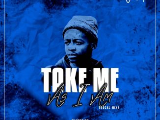 Jebha – Take Me As I Am (Vocal Mix) ft Boohle, Tee Jay & Sk