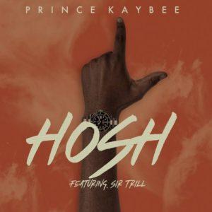 Prince Kaybee – Hosh (Lyrics) Ft. Sir Trill