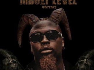Mixtape: Stilo Magolide – Mbuzi Level