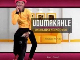 Download Dumakahle New Album & Songs 2020 Zip Mp3 Fakaza