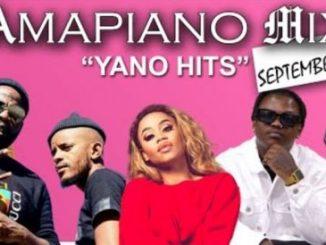 Dj TKM – Amapiano Mix (4 September 2020) Ft. Kabza De Small, Sha Sha, Focalistic, Vigro Deep