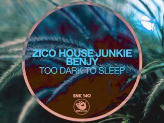 Zico House Junkie & Benjy – Too Dark To Sleep