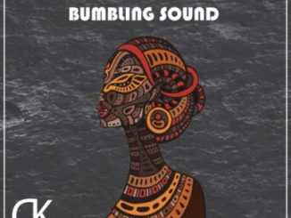 Midnight SA & TorQue MuziQ – Bumbling Sound Mp3 Download