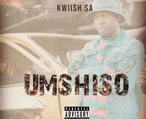Kwiish SA – LiYoshona Ft. Njelic, Malumnator & De Mthuda