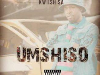 Kwiish SA – Lomhlaba Ft. MalumNator & Da Muziqal Chef