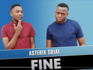 Asterix Sojat – Fine (Official Audio)