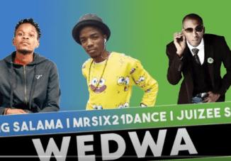 King Salama x Mr Six21 DJ Dance & Juizee SA – Wedwa