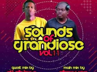 Dj Shima – Sounds of Grandiose vol. 11 (Guest Mix)