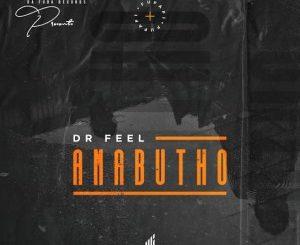 Dr Feel – Amabutho