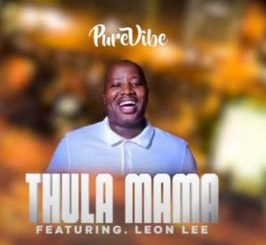 PureVibe – Thula Mama Ft. Leon Lee Video