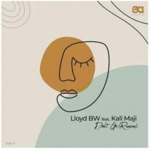Lloyd BW Ft. Kali Mija – Don't Go (Ed-Ward Remix)
